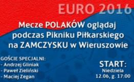 Oglądaj mecze polskiej drużyny podczas EURO 2016