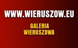 Wystartowała Internetowa Galeria Zdjęć Wieruszowa